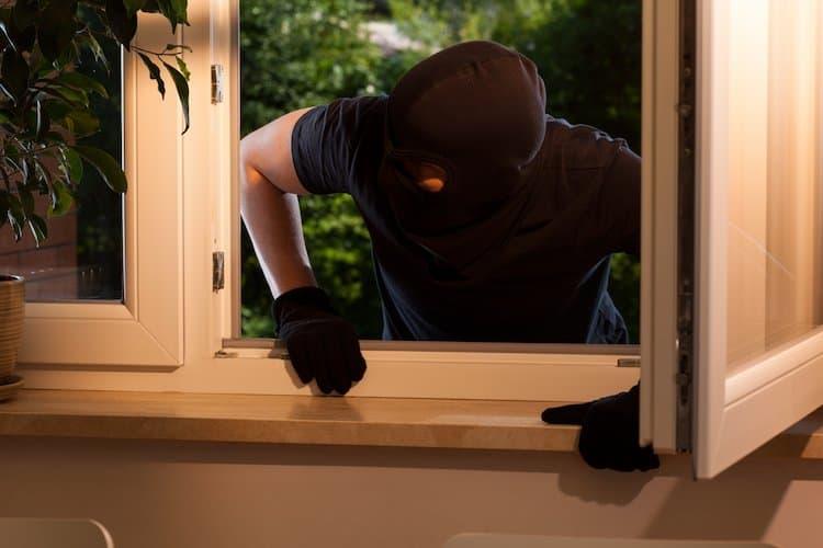 Burglar window